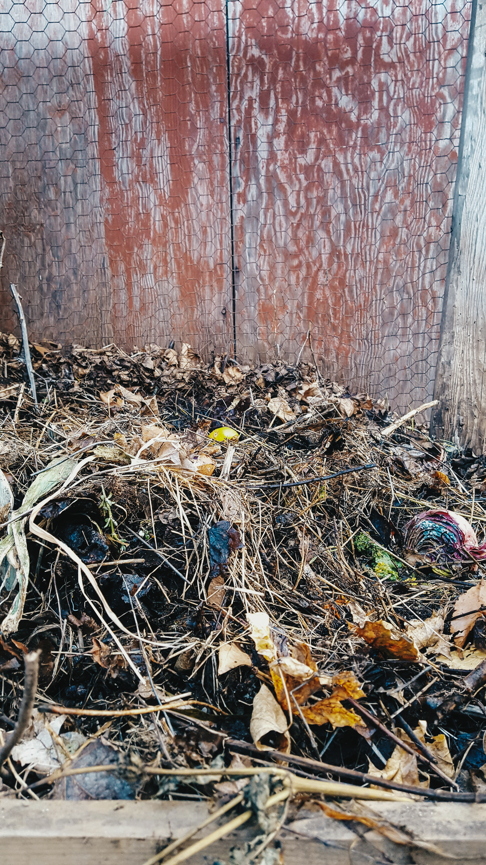 photo of compost pile in the cottage style farmhouse garden of Gloria B. Collins