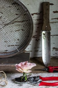 Spring Gardening: 3 Essential Gardening Tools To Get The Job Done