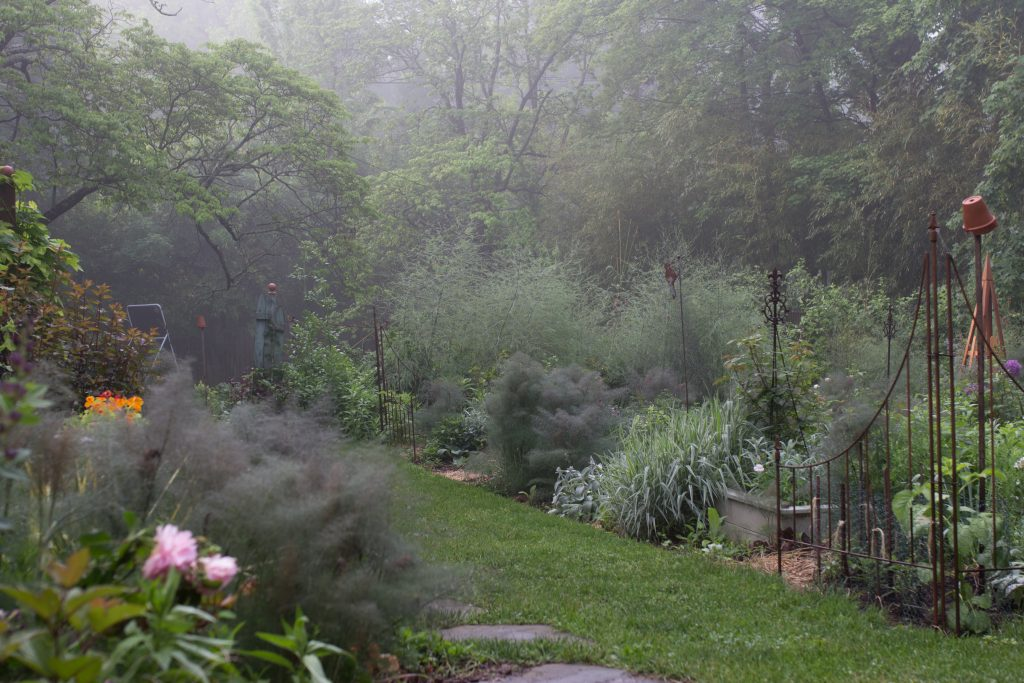 misty morning in a cottage style garden