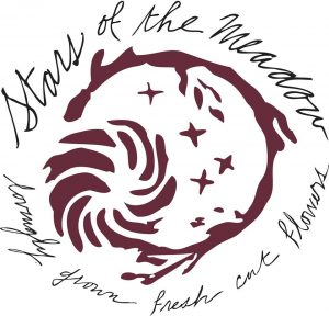 Stars of the Meadow logo